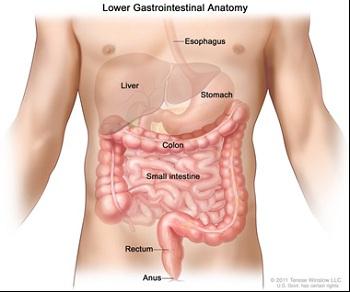 Photo of Crohn Hastalığı Komplikasyonlarında Ne Yapmalı