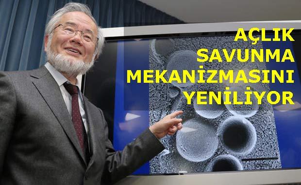 Photo of AÇLIK ÜZERİNE ARAŞTIRMA NOBEL KAZANDI