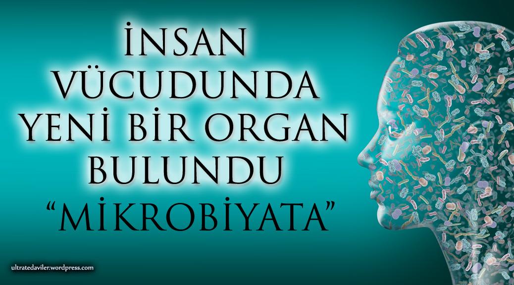 Photo of İNSAN VÜCUDUNDA YENİ BİR ORGAN BULUNDU