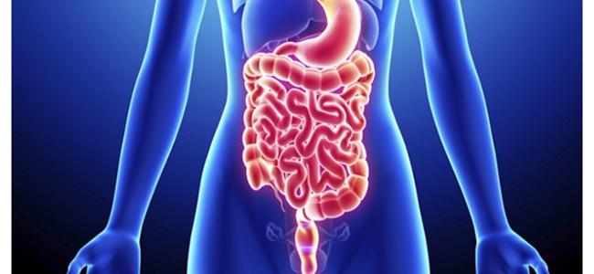 Photo of Crohn hastalığı, belirtileri ve tedavisi
