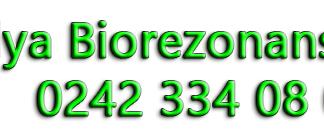 biorezonans antalya