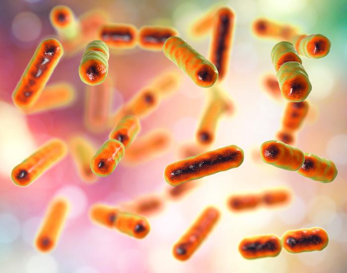 Photo of Bağırsak Bakterilerinin Düzenlenmesi İle Anksiyete Giderilebilir